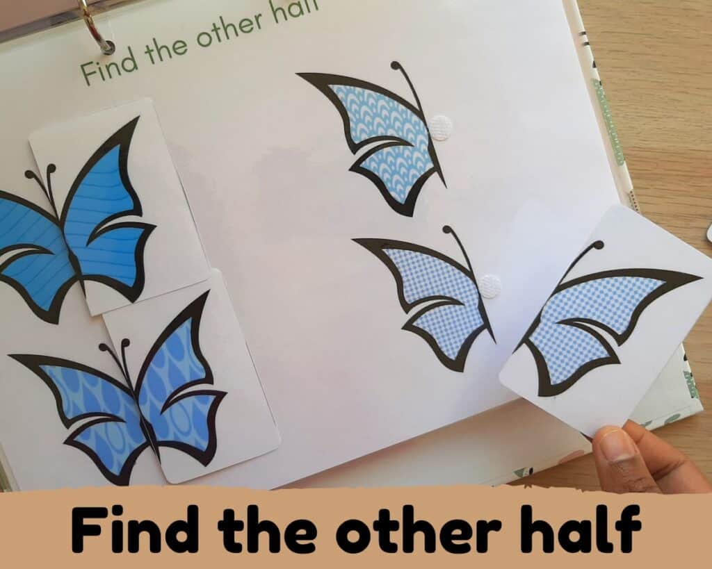 pattern matching activity. Find other half of butterfly