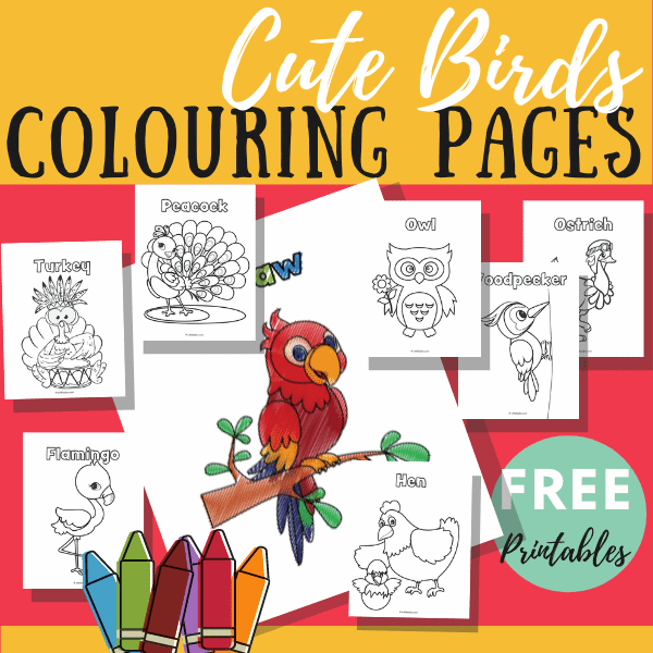 10 birds colouring pages free printable